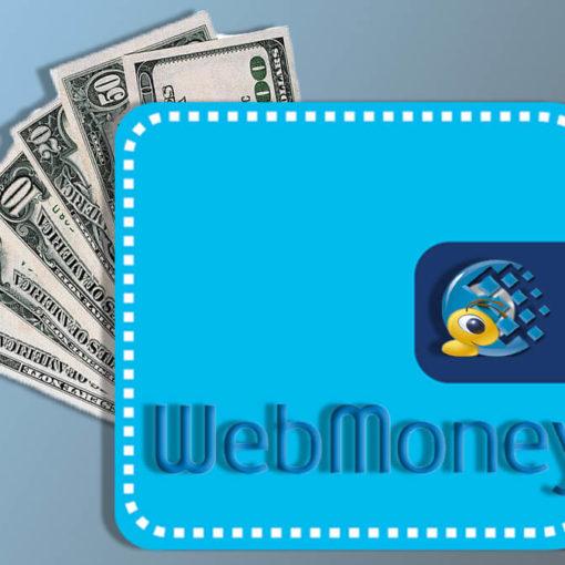 Несколько проверенных способов заработать WebMoney